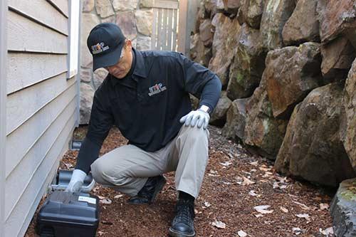 Pest Technician setting trap