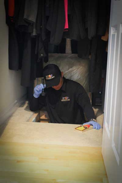 Additional Pest Control Services - Technican in Crawlspace